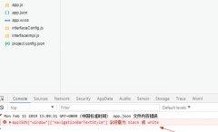 微信开发工具提示appJSON……字段需为bl