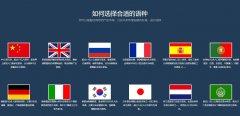 重庆小语种网站建设制作